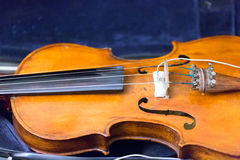 Abstract musical background is the violin toned photo Stock Image