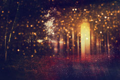 Abstract and mysterious background of blurred forest Stock Image