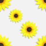 Abstract naadloos behang met zonnebloemen Stock Foto