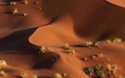 Abstract namib dunes. Aeral photographie of abstract red dunes of the namib desert Stock Image