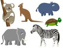 Abstract natural animal, wild mammal Royalty Free Stock Image