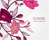 Abstract natural background. Abstract light vector  background with drawing flowers Royalty Free Stock Photos