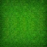 Abstract natural background of green grass pattern and texture background. Abstract natural background of green grass pattern and texture for background Stock Photo