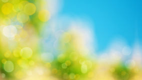 Abstract natural backgrounds. For your design royalty free stock images