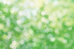 Abstract natural blur background, bokeh texture Stock Image