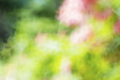 Abstract The natural colors and background Stock Photo