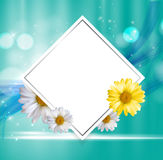 Abstract Natural Floral Frame Background wth Chamomile Flowers. Vector Illustration Royalty Free Stock Image