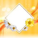 Abstract Natural Floral Frame Background wth Chamomile Flowers. Vector Illustration Royalty Free Stock Photo