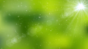 Abstract natural green organic background. 3D rendering Royalty Free Stock Photos