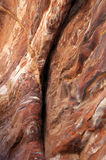 Abstract natural rock pattern. Close-up of the rock formations in Petra Jordan Stock Photo