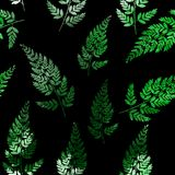Abstract Natural Spring Seamless Pattern Background with Leaves. Vector Illustration. EPS10 Royalty Free Stock Images