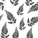 Abstract Natural Spring Seamless Pattern Background with Leaves. Vector Illustration EPS10 Stock Photography