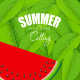 Abstract Natural Summer Background with Royalty Free Stock Images