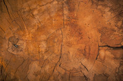 Abstract natural wooden texture background Stock Photography