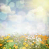 Abstract nature background Royalty Free Stock Photos