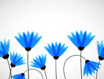 Abstract nature background. Blue cornflowers. Stock Image