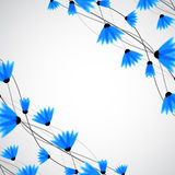 Abstract nature background. Blue cornflowers. Vector Stock Photography