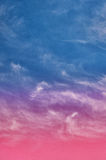 Abstract nature background Stock Photography