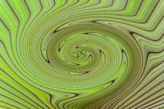 Abstract nature background of palm leaf. Stock Photos