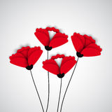 Abstract nature background. Red poppy flowers. Stock Photography