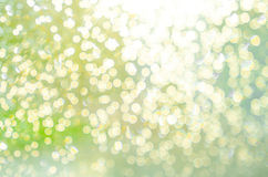 Abstract nature blur background Stock Images