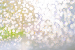 Abstract nature blur background Stock Image