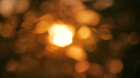 Abstract nature bokeh background stock footage