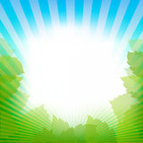 Abstract Nature Frame Background. Vector Stock Image