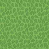Abstract nature green leaf vintage background, pattern seamless. Abstract nature green leaf vintage vector background, pattern seamless Stock Photos
