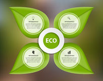 Abstract nature infographic. Green leaves on a colorful background. Royalty Free Stock Photos