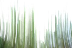 Abstract nature. Abstract picture of green stripes Royalty Free Stock Photos