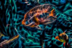 Abstract neon background with illustration of an orange fish. And a wavy surface Stock Photography