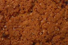 Abstract oatmeal chip cookie macro texture Royalty Free Stock Images