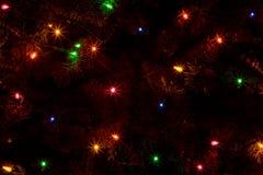 Free Abstract Of Christmas Tree Lights Stock Image - 10978281