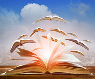 Free Abstract Of Open Book Flying As Knowledge Wisdom Going To Future Royalty Free Stock Photos - 93665548