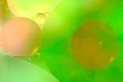 Abstract oil bubbles Stock Photography