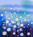 Abstract oil painting white flowers field in soft color Royalty Free Stock Image