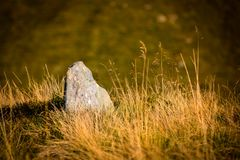 Old stone in grass Royalty Free Stock Image