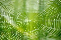 Abstract onduidelijk beeld van een spin netto over groene achtergrond Royalty-vrije Stock Foto