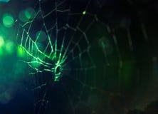 Abstract onduidelijk beeld van Spinneweb en bokeh Stock Foto