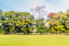 Abstract Onduidelijk beeldweide en bos als achtergrond Royalty-vrije Stock Afbeelding