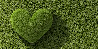 Abstract one heart on grass Royalty Free Stock Photography