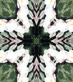 Abstract Ontwerp Kaleidescope Stock Foto