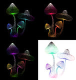 Abstract ontwerp van kleurrijke paddestoel op geïsoleerde achtergrond Stock Fotografie