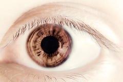Abstract oog Royalty-vrije Stock Afbeeldingen