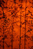 Abstract orange background. Abstract pattern of backlit grass on orange background Royalty Free Stock Image