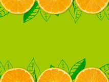 Abstract orange background. fresh orange slide isolated on green. Background decorate with green leaves line for food and beverage background Stock Photo