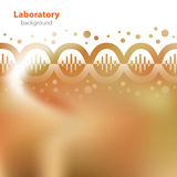 Abstract orange background. Abstract orange medical laboratory background Royalty Free Stock Photography