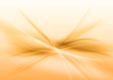 Abstract Orange Stock Photos