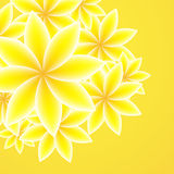 Abstract orange background. Vector Illustration Stock Photos